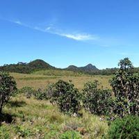 Exploring 2nd highest peak in Sri Lanka - Kirigalpoththa mountai