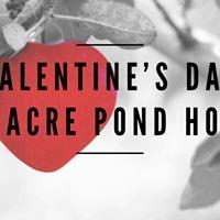 Valentines Day Massacre Pond Hockey Tournament