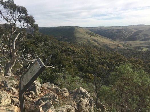 Half Day Hikes - Werribee Gorge