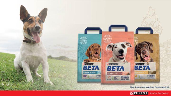 BETA Product Demonstration