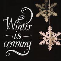 The DF Winter Workshop Series 2017