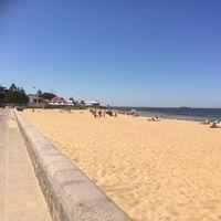 Free - Williamstown beach 5km (or 3km) run tme trial