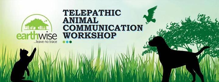 Bangalore- Basic Telepathic Animal Communication Workshop