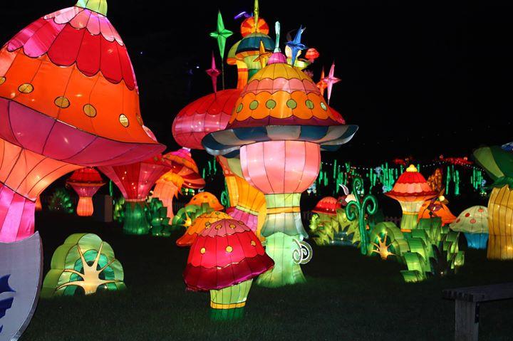 Festival of Light Brighton