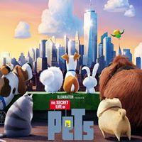 Cinema sotto le stelle PETS - Vita da animali