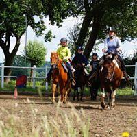 Westernreitcamp fr Kinder und Jugendliche