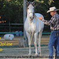 Workshop Parelli L1 - Intermedio