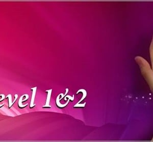 Reiki course levels 1&amp2 with Mohammad Chahine