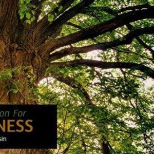 Sustainable Innovations for Family Business