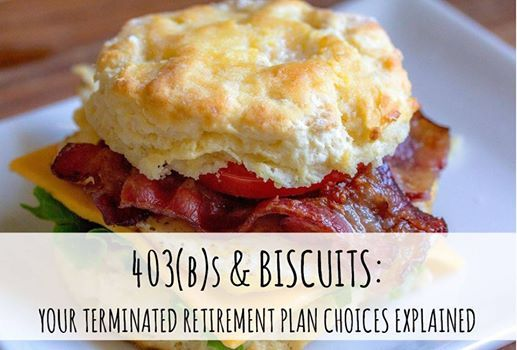 403(b)s & Biscuits Your Terminated Plan Choices Explained