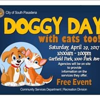 Doggy Day with cats too