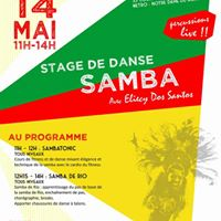 Stage De Samba Carnaval Rio et Sambatonic