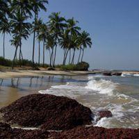 Konkan  Sindhudurg  Scuba Diving Tour 26th 28th January 2018