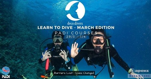 Learn To Dive - March Certification Courses