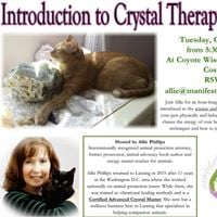 Intro to Crystal Therapy for Pets