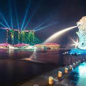 Singapore Treatment Tour
