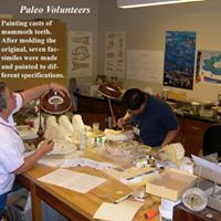 40 Years of Paleontological Research at the Museum Talk