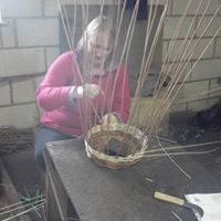 Willow Basket Making for Beginners