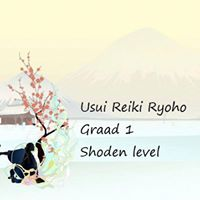 VB Graad 1 inwijdingcursus Usui Reiki Ryoho door Marlon