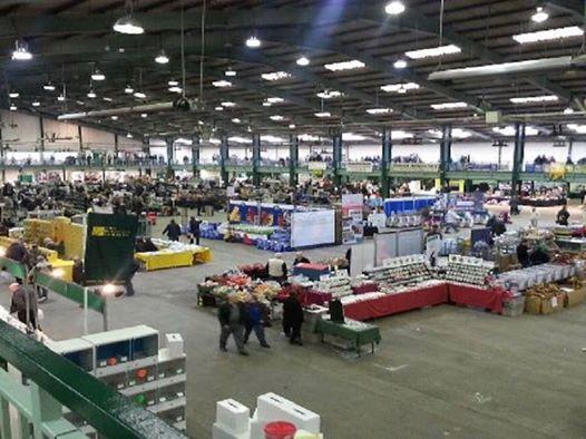Stafford spring sale
