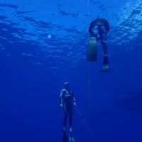 Freediving workshop open only for 4 new students maximum