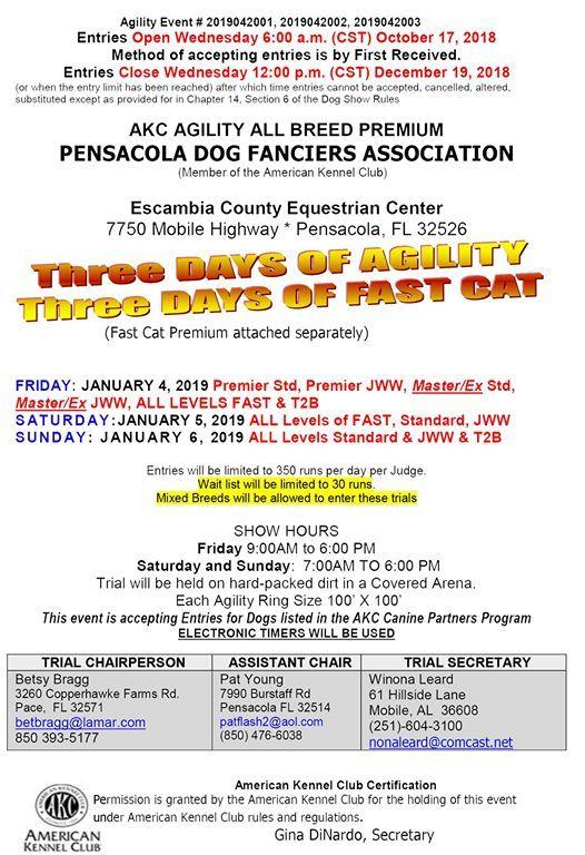AKC Agility All Breed Premium at Pensacola, Florida, Pensacola