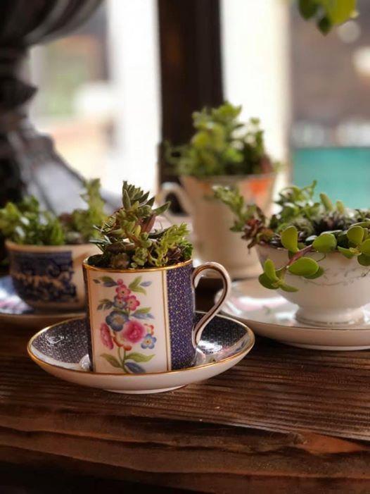 Vintage Teacups & Succs