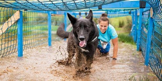 Muddy Dog Challenge Exeter 2019 - Saturday 13th April