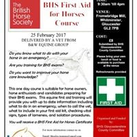 First Aid for Horses Certificate