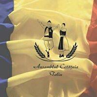 "Ansamblul folcloric ""Cetatuia"""