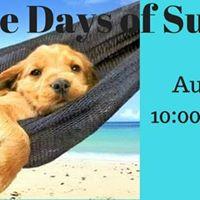 Dog Gone Days of Summer
