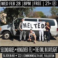 Melted Secondaries Hungover (FL) the Owl in Daylight