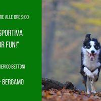 Ricerca Sportiva (Just for Fun)