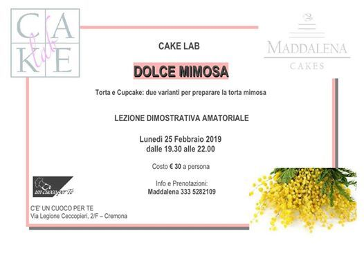 Dolce Mimosa - Cake Lab