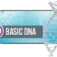 Thetahealing DNA Base