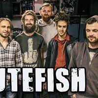 Mutefish Free show