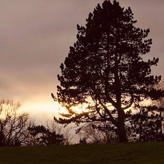New Years Cavehill run jog walk