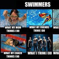 Annual Swim and Dive Picnic