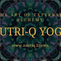 Presentation The Art of External Alchemy