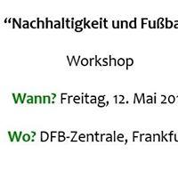 DFB-Workshop Nachhaltigkeit und Fuball