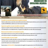 Equin(d)i Seminario etologia equinacomportamento del cavallo