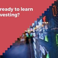 Learn Stock Investing from Jamie Beaton Tiger Analyst