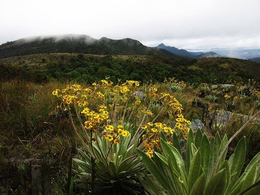 Trekking Integral Cerros Orientales