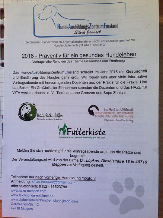 Ganzheitliche Behandlung ber Hundeosteopathie & Physioterapie