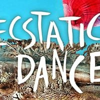 Ecstatic Dance Odessa Amsterdam  DJ Goldmund