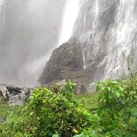Trip to Jog falls (2nd highest in India)