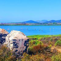 IK-Wanderung zu den Flamingos in den Salinen