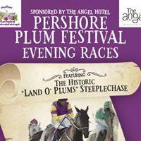 Pershore Plum Festival Racenight
