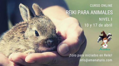 Curso Reiki con Animales OnLine