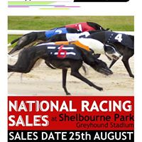 The National Racing Sales Shelbourne Park Friday 25th August